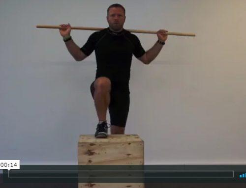 Stående ryg rotations mobilisering